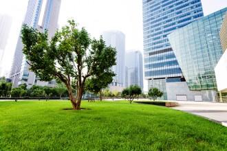 Ekologiczne miasto bez samochodów – czy to możliwe?
