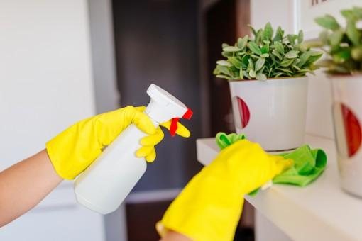 Domy ekologiczne pod każdym względem – zasady bezpiecznego sprzątania