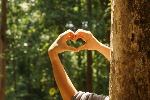 ECO technologia w twoim domu - dbaj z nami o  środowisko!