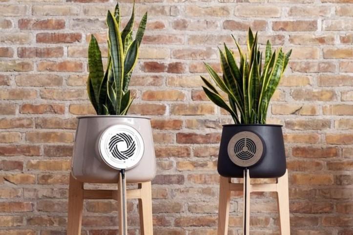 Oczyszczacze powietrza – funkcjonalne, oryginalne dekoracje w naszych wnętrzach