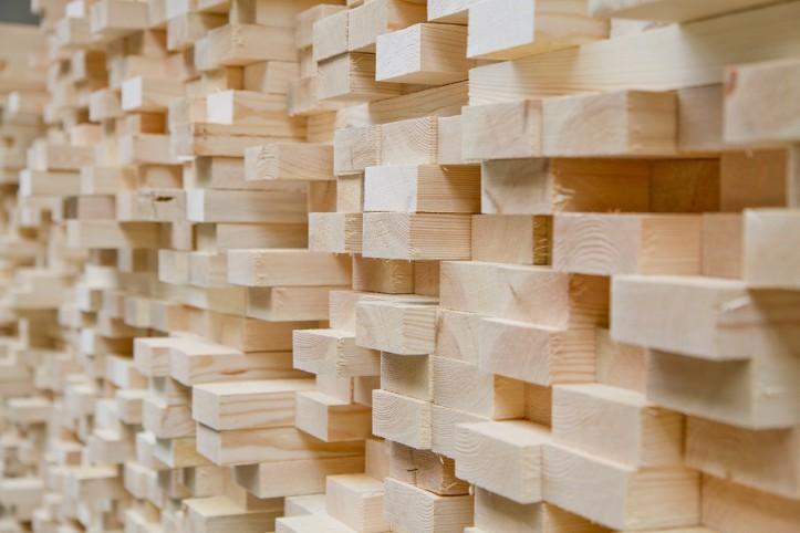Porta wśród twórców konsorcjum podmiotów kluczowych technologii drzewnych i leśnych