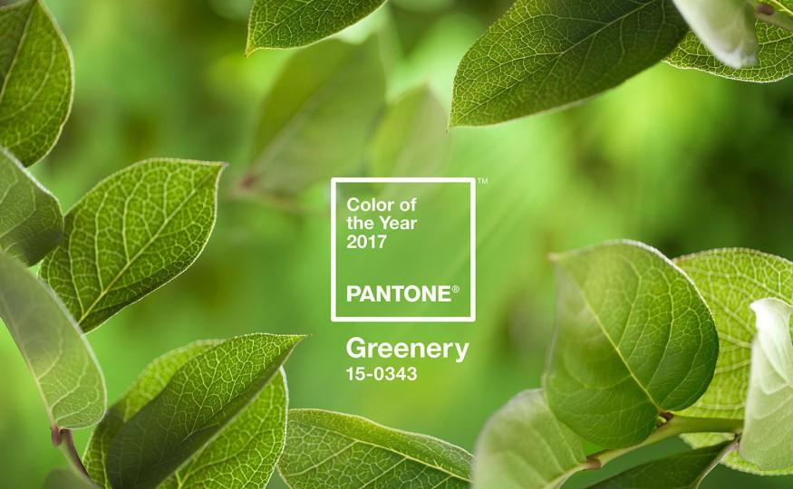 Kolor zielony we wnętrzach – Greenery