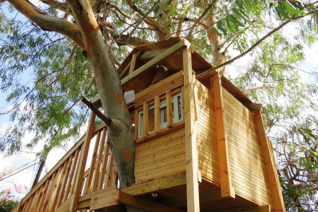 Inspirujące domki na drzewach. Architektura wpisana w krajobraz