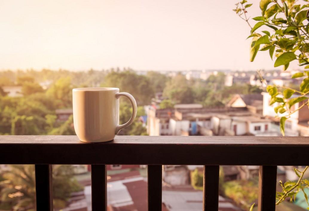 Balkon jesienią i zimą: jakie wybrać rośliny, aby przetrwały niskie temperatury?