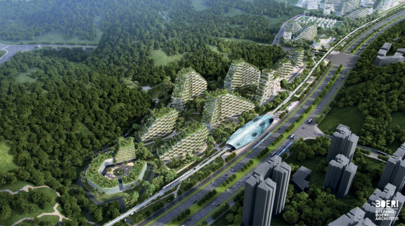 file.forest-city (1)